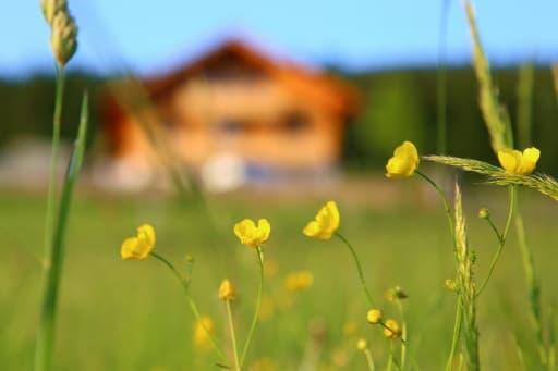 Vor der Ferienwohnung Maxhütte im Erzgebirge